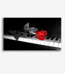 Rosa en el piano _G550.2