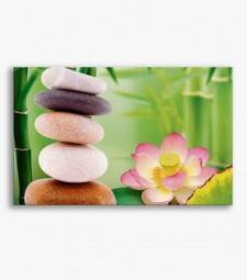 Flor y piedras _G664