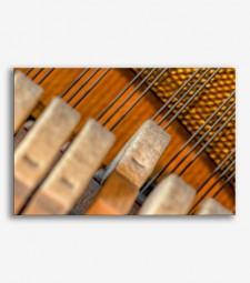 Cuerdas  _G683