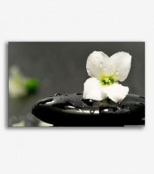 Piedray flor zen  _G738
