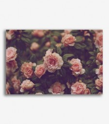 Flores vintage  _G833