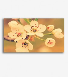 Flores vintage  _G845
