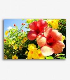 Flores en el campo _G.187