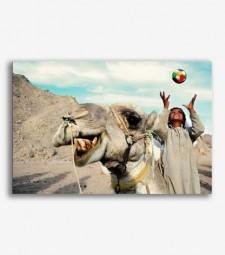 Camello _G264