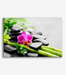 Piedras y flor zen _G590