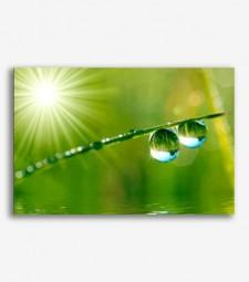 Gota de agua _G592