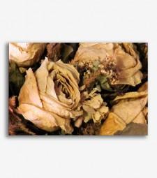 Flores secas  _G605