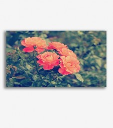 Flores vintage  _G809