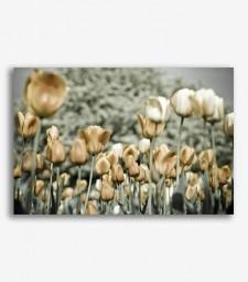 Flores vintage  _G813