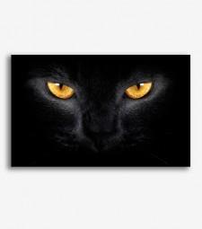 Gato negro _G1063