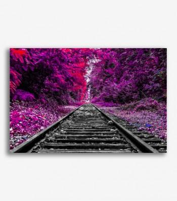 Paisaje carril ferrocarril
