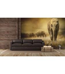 Fotomural elefantes africa