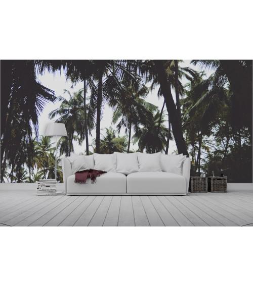 Fotomural palmeras contraluz