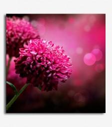 Flores _5.61